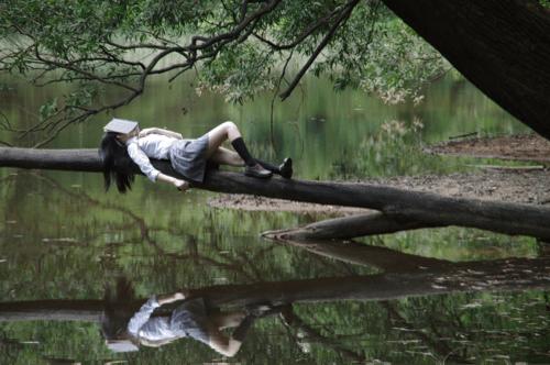 木の枝で寝ている