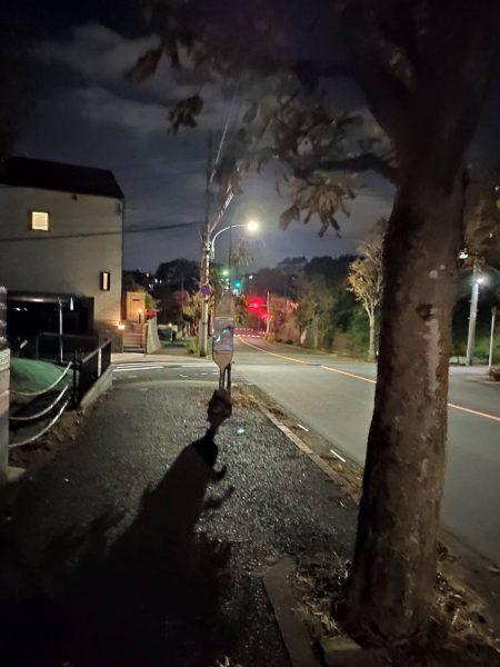 帰り道の道中